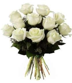 12 Rosas Brancas