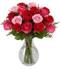 20 Rosas Coloridas