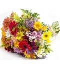 Flores do Campo Grande