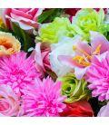 Mix e outras flores