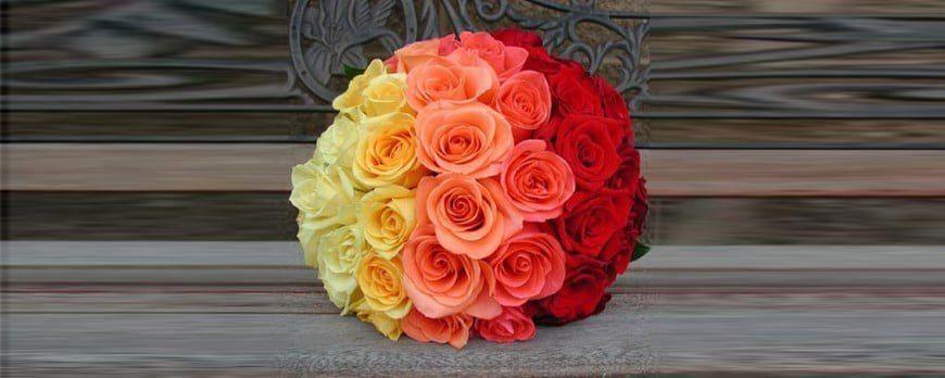 Cores das Rosas e os significados