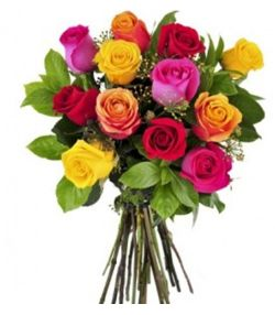 12 Rosas Coloridas