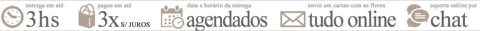 Info Floricultura em Vitória
